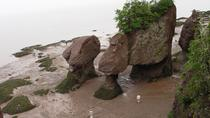 Hopewell Rocks Admission, New Brunswick, Attraction Tickets