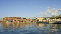 Historical Guided Day Tour: Botanical Gardens and Port Louis from Pamplemousses, Port Louis, Day ...