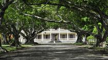 Port Louis, Chateau Labourdonnais, Eureka Colonial House and Botanical Garden Day Tour from ...