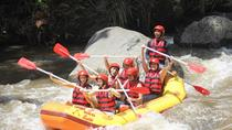white water rafting, Cat coffee and Monkey forest ubud Tour, Ubud, Coffee & Tea Tours