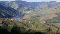 Full-Day Douro Valley Private Wine Tour with Lunch, Porto, Private Day Trips