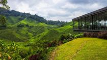 2D1N Cameron Highlands and Nature Tour with visit to Strawberry Park - Rose Garden - Tea ...