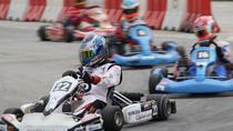 Half-Day Go Karting Adventure and Putrajaya Tour from Kuala Lumpur, Kuala Lumpur, Adrenaline &...