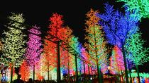LED Forest i-City and Snow Walk in Shah Alam Including Putrajaya Sightseeing from Kuala Lumpur, ...