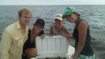 Private Scalloping Charter, Crystal River, Other Water Sports