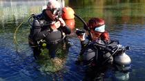 Try SCUBA Diving in Crystal River (Rainbow River Dive), Crystal River, Scuba Diving