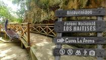 Los Haitises National Park Tour with Lunch from Punta Cana, Punta Cana, Half-day Tours