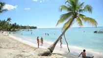 Saona Island Beach Day, Punta Cana, Day Trips