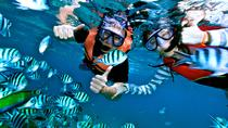 Hon Mun Island Half-Day Snorkeling Guided Tour from Nha Trang , Nha Trang, Other Water Sports