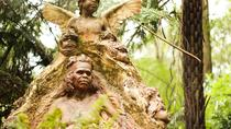 Dandenong Ranges Nature Day Trip from Melbourne Including William Ricketts Sanctuary, Melbourne,...