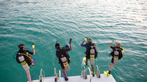 2-Tank Discover Scuba in ST Thomas with Optional Snorkeling, St Thomas, Scuba Diving