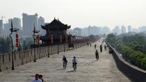 Xi'an Downtown One Day Bus Tour, Xian, Bus & Minivan Tours