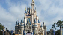Day trip to Walt Disney World from Clearwater Beach, Clearwater, Day Trips