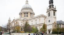 Private London Tour with Guard Change and St Pauls Cathedral, London, Private Day Trips