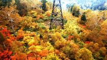 Autumn Hokkaido! Kurodake Ropeway and Ginga Ryusei Falls, Sapporo, Day Trips
