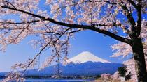 Cherry Blossom Tour with Visit to Odawara Castle, Lake Kawaguchi, and Pirate Ship Ride including ...