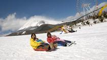 Full-Day Cruise, Sledding and Gotemba Outlet Tour from Tokyo, Tokyo, Day Trips