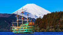 Full-Day Cruise, Sledding and Gotemba Outlet Tour from Tokyo