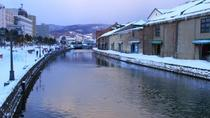 Full Day Otaru Canal and Sledding Experience Trip from Sapporo , Sapporo, Day Trips