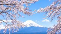 Mt. Fuji 5th Station, Lake Kawaguchi, and Seasonal Fruit Picking from Tokyo, Tokyo, Day Trips