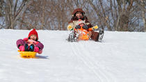 Ski Resort Sledding and Strawberry Picking Day Trip including Crab Lunch Buffet, Tokyo, Day Trips