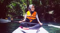 Kayaking & Swimming in Hidden Freshwater Lagoon, Unseen Krabi Half Day Trip, Krabi, Day Trips