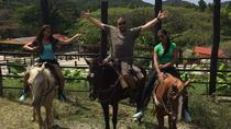 Amber Cove Excursion: Horseback Ride and Tropical Garden Tour, Puerto Plata