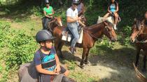 Amber Cove Excursion: Horseback Ride at Rancho Los Cacaos, Puerto Plata, Ports of Call Tours