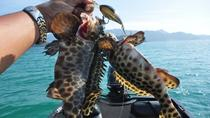 Fishing Trip At Koh Chang, Ko Chang, Day Cruises