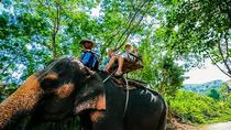 Half Day Safari Tour Koh Samui, Surat Thani, 4WD, ATV & Off-Road Tours