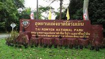 Half Day Sightseeing at Tai Romyen National Park, Surat Thani, Attraction Tickets
