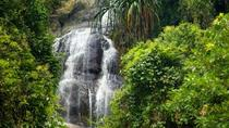 Sightseeing at Tai Romyen National Park 4Day 3Night, Surat Thani, Attraction Tickets