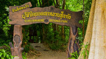 Sukhothai Camping At Ramkhamhaeng National Park 3D2N, Bangkok, Multi-day Cruises