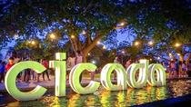 Weekend Mangrove Forest Tour and Cicada Night Market in Hua Hin, Hua Hin, Nature & Wildlife