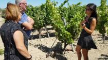 WINE AND FOOD TOUR in a winery among the vineyards, Cagliari, Food Tours