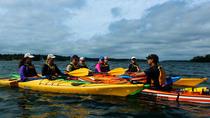 Sea Kayaking in the Stockholm Archipelago from Graddo, Stockholm, Kayaking & Canoeing