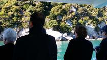 Experience the Abel Tasman Area by Land and Sea, Nelson, Day Trips