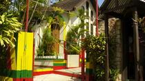 Bob Marley Nine Mile Tour from Ocho Rios, Ocho Rios, Private Sightseeing Tours