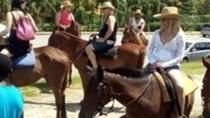 Horseback Riding from Runaway Bay, Runaway Bay, Horseback Riding