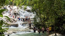 Private Blue Hole and Dunn's River Tour from Montego Bay, Montego Bay, Private Sightseeing Tours