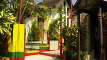 Private Bob Marley Nine Mile and Dunns River Falls Tour w/Cruise Port Pickup, Jamaica, Day Trips