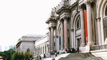 Combo Tour of the Met and the American Museum of Natural History, New York City, Private ...