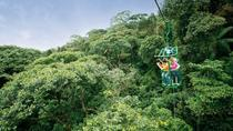 Combo Tour from San Jose: Boat Ride on the Sarapiqui River, Hiking and Aerial Tram Ride, San Jose, ...