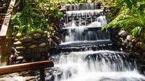 Day Trip to Tabacon Hot Springs with Lunch, San Jose, Day Trips