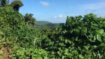 Adventure Lovers Tour in Puerto Rico: Ziplining, ATV Riding and Hiking, San Juan, 4WD, ATV &...