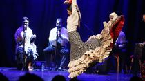 Flamenco Show at Barcelona City Hall, バルセロナ