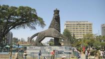 Addis Ababa City Tour by Car, Addis Ababa, City Tours
