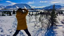 Denali Park Winter Experience, Denali National Park, Cultural Tours