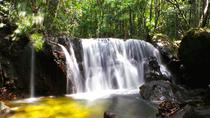 Discover Phu Quoc National Park and Cua Can River full day, Phu Quoc, Full-day Tours