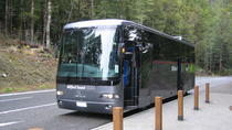 Milford Sound Day Trip and Cruise from Queenstown by Luxury Coach, Queenstown, Day Trips